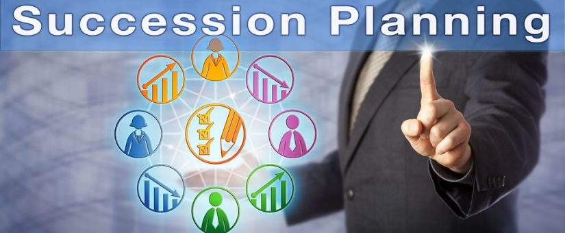 Succession planning for start-ups and scale-ups | AlpinaSearch